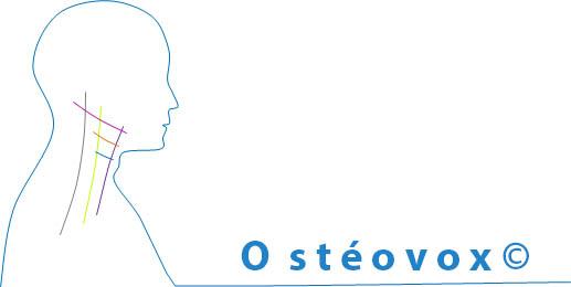 Osteovox